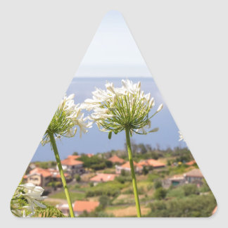 Group of white agapanthus near village and sea triangle sticker
