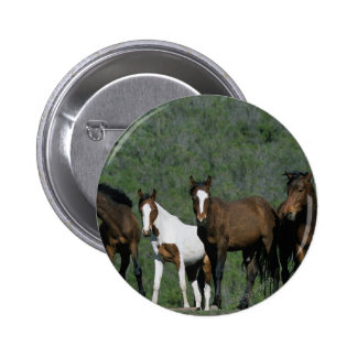 Group of Wild Mustang Horses Pins