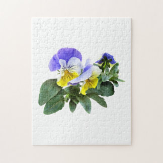 Group Of Yellow And Purple Pansies Jigsaw Puzzle