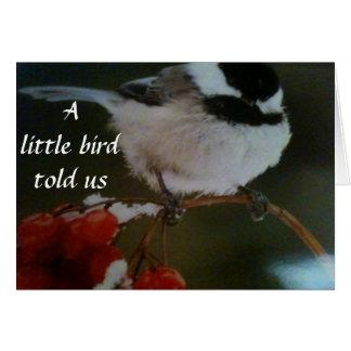 GROUP SENDS BIRD WITH BIRTHDAY WISH GREETING CARD