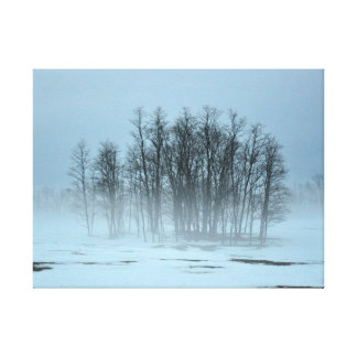 Grove of Trees in Snow Canvas Prints