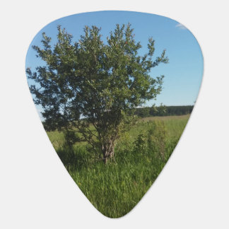 Groverallman Guitar Pick