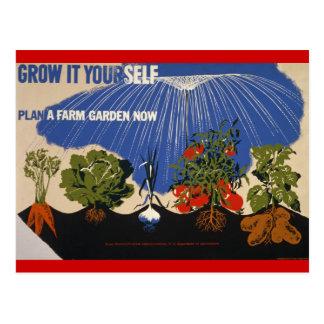 Grow a Farm Garden Postcard