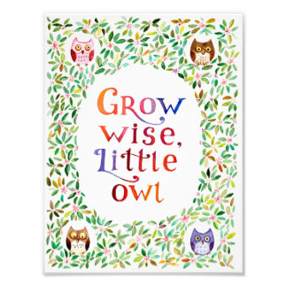 Grow wise little owl  Watercolor painting Photo Art