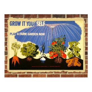 Grow your own garden - poster (vintage reprint) postcard