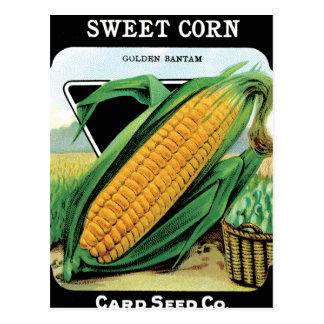 Growing Corn Postcard