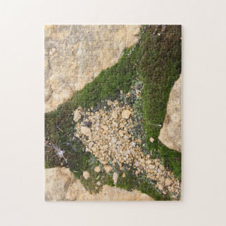 Growing Moss Jigsaw Puzzle