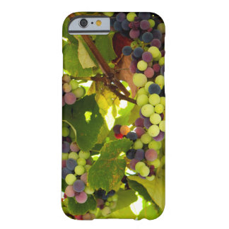 Growing Wine Barely There iPhone 6 Case