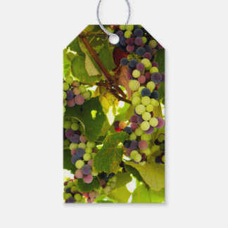 Growing Wine Gift Tags