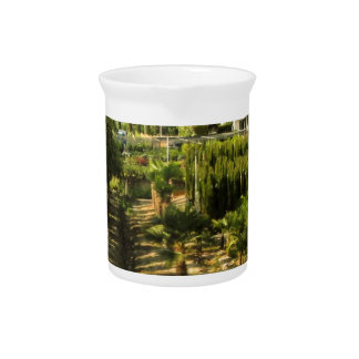 Growing Wine in Tuscany Photo Print Pitcher
