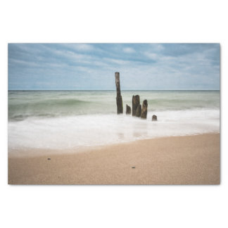 Groynes on shore of the Baltic Sea Tissue Paper