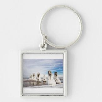 Groynes on the Baltic Sea coast Key Ring