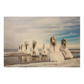 Groynes on the Baltic Sea coast Wood Canvas
