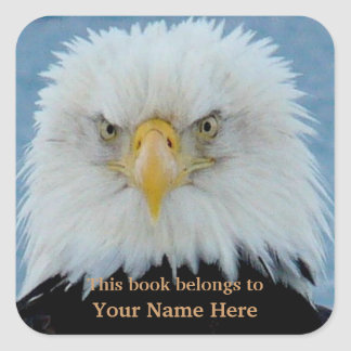 Grumpy Bald Eagle Square Sticker