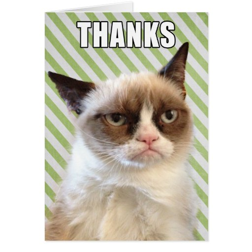Grumpy Cat™ Thank You Card | Zazzle
