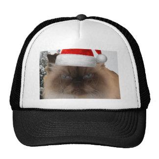 grumpy cat hats grumpy cat trucker hat designs zazzle. Black Bedroom Furniture Sets. Home Design Ideas