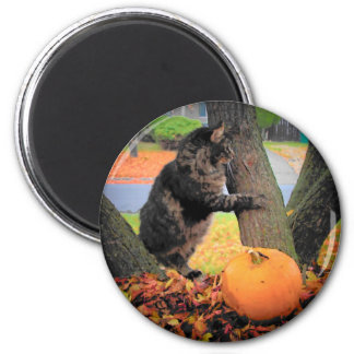 Grumpy Guards His Pumpkin 6 Cm Round Magnet