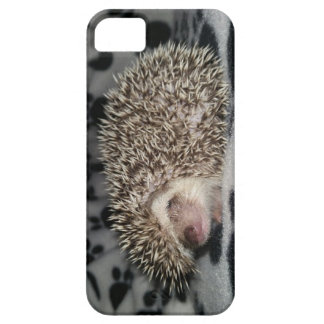 Grumpy Hedgehog Phone Case