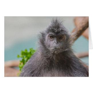 Grumpy Monkey with a Mustache Blank Card