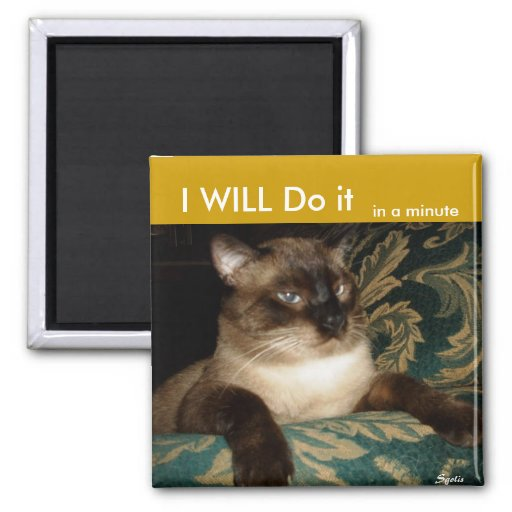 Grumpy Siamese Cat Fridge Magnet Fridge Magnet