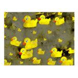 Grunge Ducks Postcards
