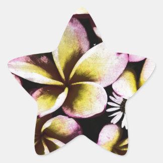 Grunge frangipani star stickers