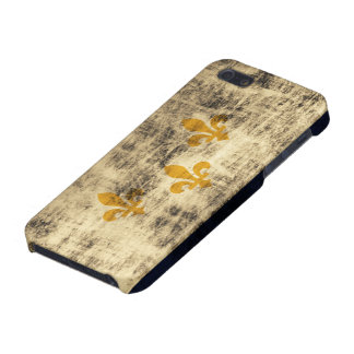Grunge New Orleans Flag Cover For iPhone 5/5S