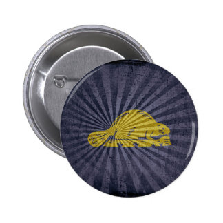 Grunge Oregon Flag back Pin