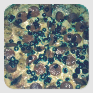 Grunge pizza apparel and items square sticker