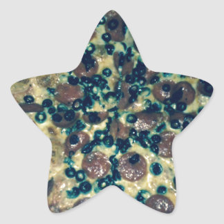 Grunge pizza apparel and items star stickers
