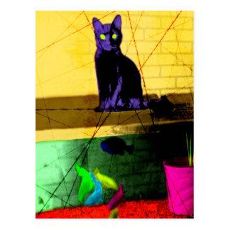 Grunge Pop Art Cat on Fish Tank Post Card