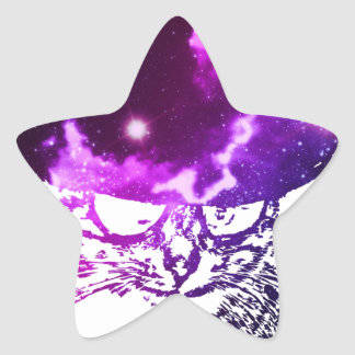 Grunge Space cat 2 Star Sticker