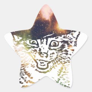 Grunge Space cat 3 Star Sticker
