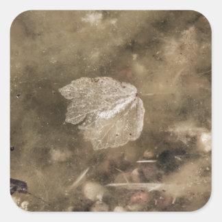 Grunge water square sticker