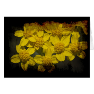 Grungy Yellow Wildflowers Valentine's Greeting Card