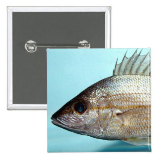 Grunt Fish 15 Cm Square Badge