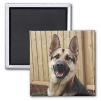 GSD Head Shot Square Magnet