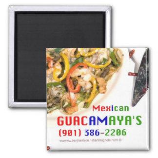Guacamaya's 2x2 Art Magnet