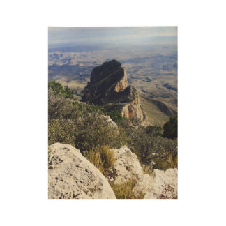 Guadalupe National Park Wood Poster