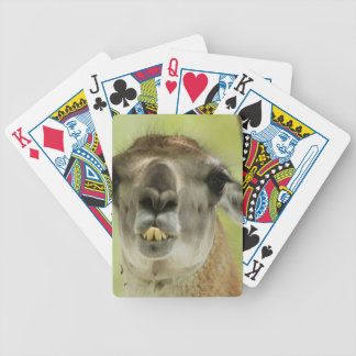 Guanaco Bicycle Playing Cards