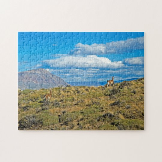 Guanaco Country, Patagonia Jigsaw Puzzle