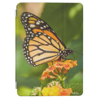 Guard of ipad photo cover of a butterfly iPad air cover