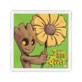 Guardians of the Galaxy | Baby Groot & Daisy Acrylic Tray