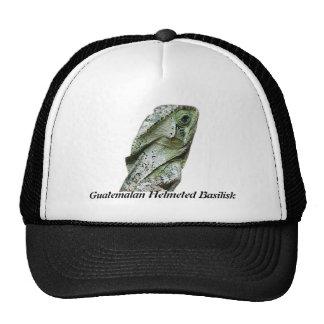 Guatemalan Helmeted Basilisk Trucker Hats