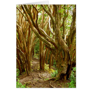 Guava Tree Forest Card