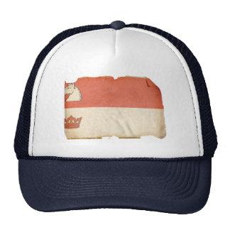 GUELPH MESH HAT