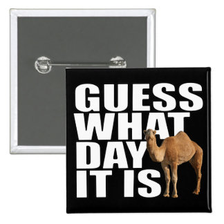 Guess What Day It Is Hump Day Camel Pinback Button