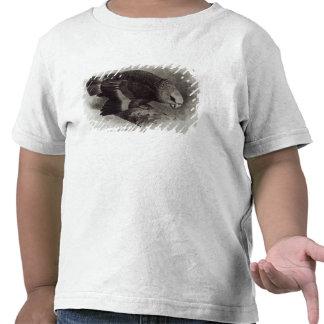 Guilding's Amazon Parrot Tshirt