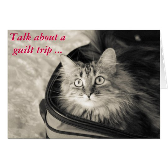 Guilt trip card with cat.