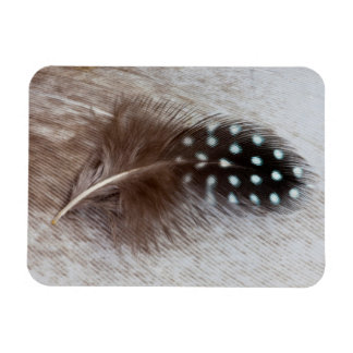 Guinea fowl and goose feather rectangular photo magnet